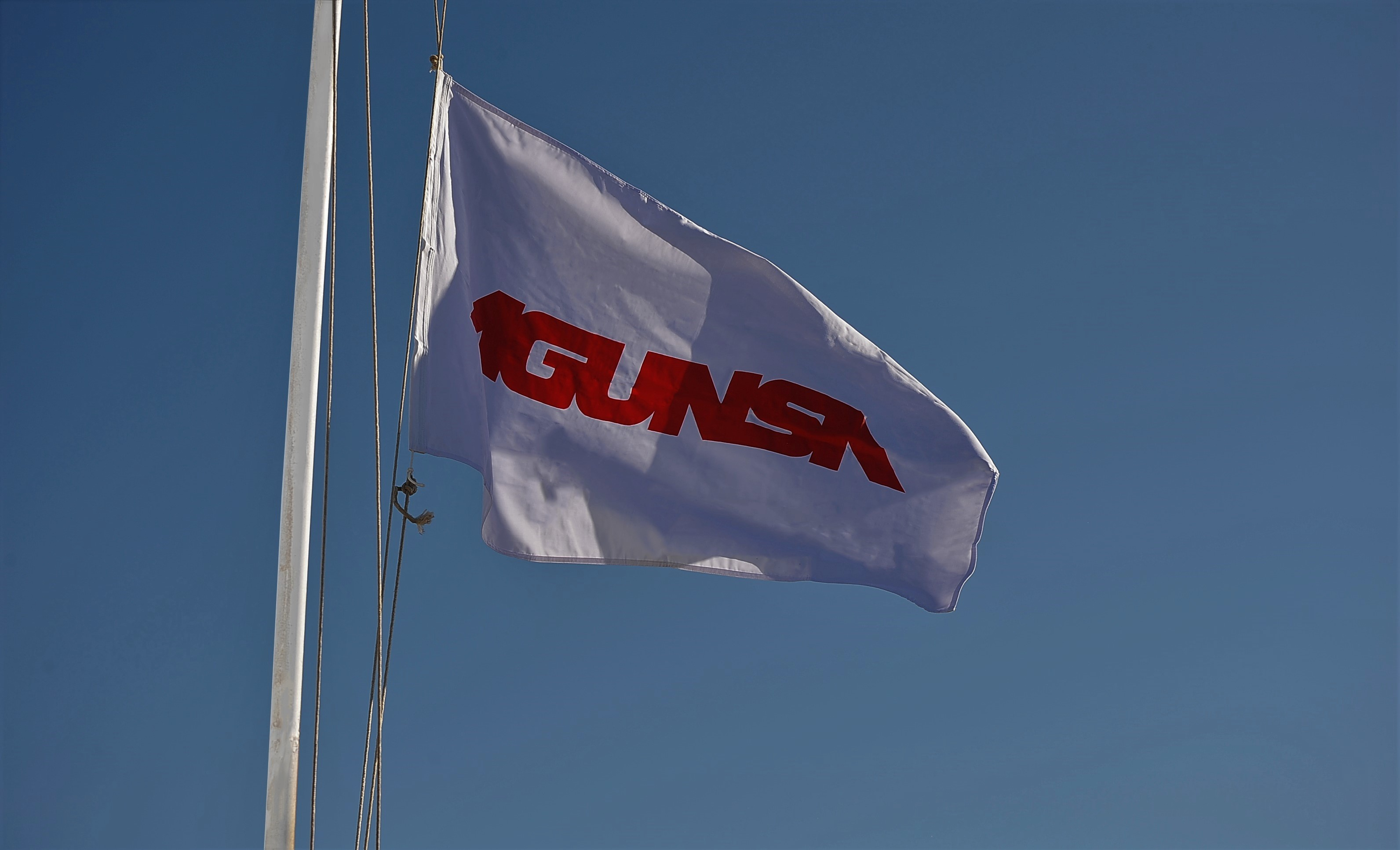 Bandera Agunsa_003